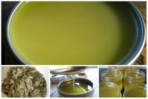 herbal-decongestant-salve-collage